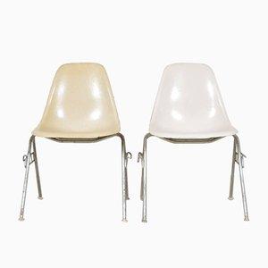 Sillas DSS Shell de Charles & Ray Eames para Herman Miller, años 60. Juego de 2