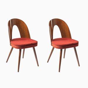 Chaises d'Appoint Vintage par Antonín Šuman pour TON, 1960s, Set de 2