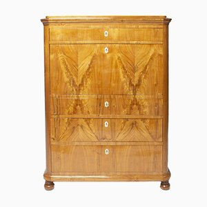 Antique Biedermeier Elm Secretaire