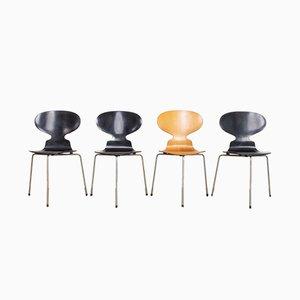Vintage Ant Chairs von Arne Jacobsen für Fritz Hansen, 1950er, 4er Set