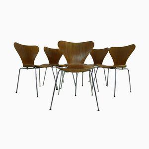 Chaises en Teck 3107 par Arne Jacobsen pour Fritz Hansen, 1980s, Set de 6