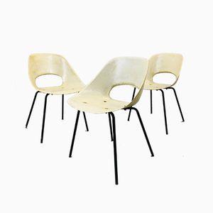 Tulip Chairs aus Glasfaser von Pierre Guariche für Steiner, 1950er, 3er Set