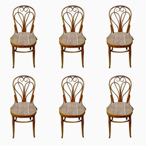Antique Lotus Chairs by Michael Thonet for Thonet, Set of 6