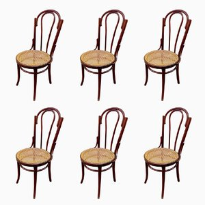 Antique Thonet Chairs, Set of 6
