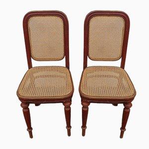 Antike österreichische Esszimmerstühle mit Sitz aus Schilfrohr vonThonet, 2er Set