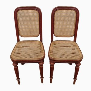 Antique Austrian Cane Dining Chairs from Thonet, Set of 2