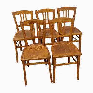 Mid-Century French Dining Chairs from Fischel, 1950s, Set of 5