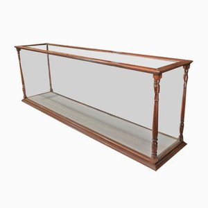 Antique Mahogany & Glass Museum Display Cabinet, 1900s