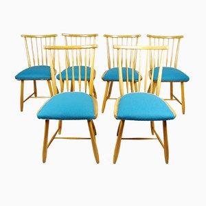 Esszimmerstühle von Ercol, 1950er, 6er Set