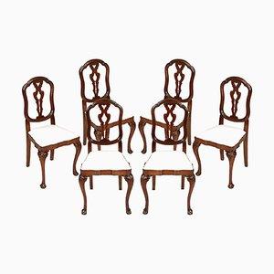 Geschnitzte venezianische Stühle aus Walnussholz, 19. Jh., 6er Set