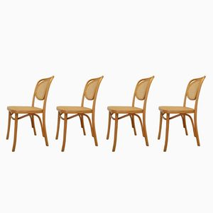 Bentwood No. 215 Chairs by Michael Thonet for ZPM Radomsko, 1970s, Set of 4
