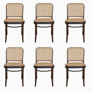 Nr. 811 oder Prager Stühle von Josef Hoffmann, 1960er, 6er Set