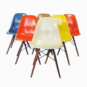 DSW Beistellstühle von Charles & Ray Eames für Vitra, 1950er, 6er Set