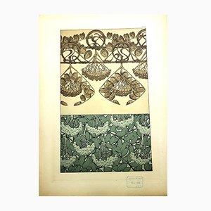 Litografia Plants vintage di Alfons Mucha, 1903