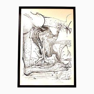 Litografía Les Songes Drolatiques de Salvador Dalí, 1973
