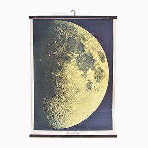 Deutsche Vintage Mond Lehrtafel, 1960er