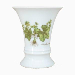 Alchemilla Vulgaris Vase von Fürstenberg Porzellan, 1980er