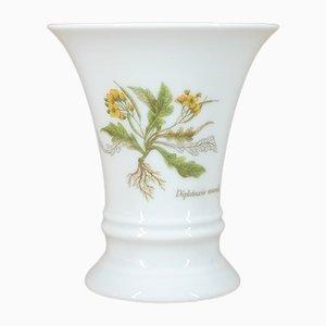 Diplotaxis Muralis Vase from Fürstenberg Porzellan, 1980s
