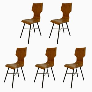 Italian Plywood & Iron Dining Chairs, 1954, Set of 5