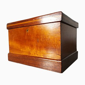 Mahogany & Lemongrass Jewelry Box with Secret Drawer, 1900s