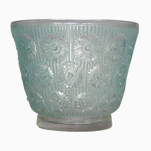 Edelweiss Vase by René Lalique, 1937