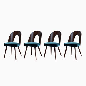 Esszimmerstühle von Antonin Šuman für Tatra, 1960er, 4er Set