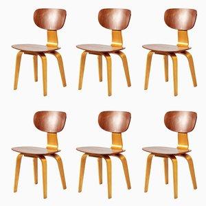 SB02 Combex Stühle von Cees Braakman für Pastoe, 1960er, 6er Set