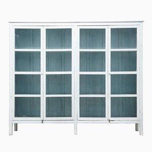19th Century Swedish Glazed Display Cabinet