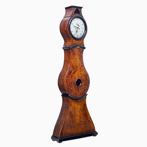 Reloj de caja alta Mora sueco de abedul del siglo XIX, década de 1840