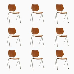 Danish Stackable Plywood Chairs, 1960s, Set of 9