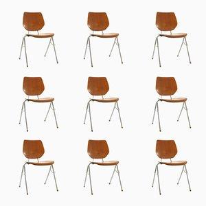 Stapelbare dänische Stühle aus Schichtholz, 1960er, 9er Set