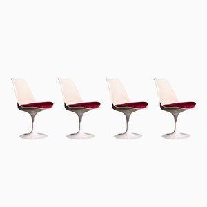 Sillas Tulip Mid-Century de Eero Saarinen para Knoll International. Juego de 4