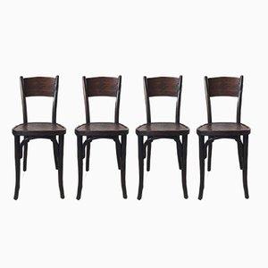Chaises de Bistrot Antiques de Jacob & Josef Kohn, Set de 4