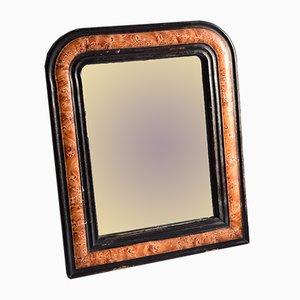 Antique Ebonised Faux Tortoiseshell Painted Mirror