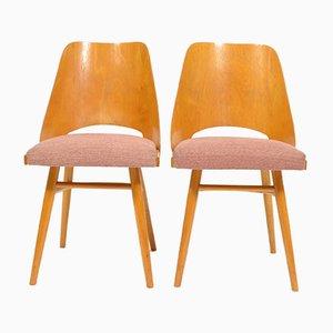 Gepolsterte Esszimmerstühle mit Gestell aus Schichtholz von TON, 1960er, 2er Set