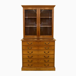Antique Victorian Mahogany Architect's Cabinet