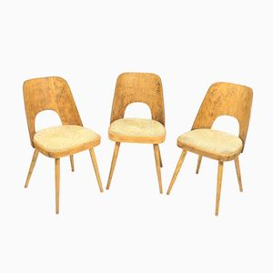 Vintage Dining Chairs by Oswald Heardtl for TON, Set of 3
