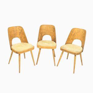 Vintage Esszimmerstühle von Oswald Heardtl für TON, 3er Set