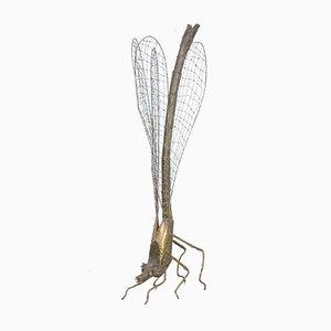 Escultura de libélula de latón de Daniel Dhaeseleer, años 70