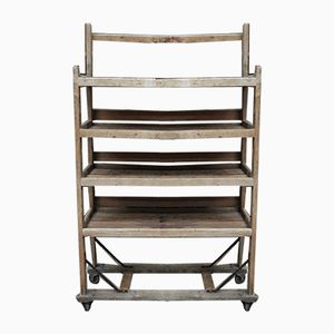 Vintage Industrial Fir Shelf with Wheels, 1950s