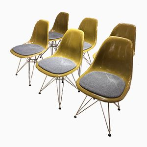 Fiberglass Side Chairs by Charles & Ray Eames for Herman Miller, 1970s, Set of 6