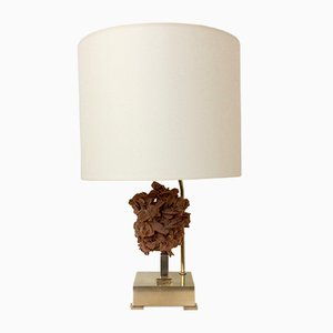 Belgian Desert Rose & Brass Table Lamp by Willy Daro, 1970s