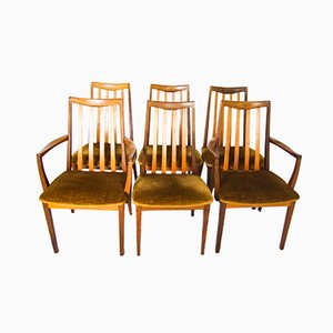 Mid-Century Fresco Dining Chairs and Carvers from G-Plan, Set of 6