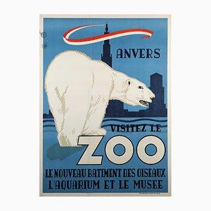 Póster del zoológico de Amberes vintage con oso polar de René Van Poppel, 1950