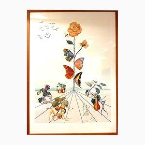 Litografia Flordali II di Salvador Dali, 1981