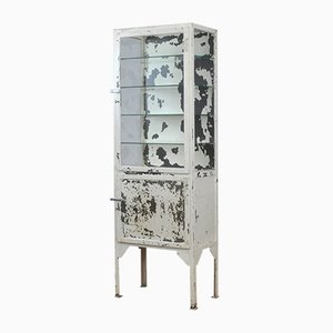 Vintage Industrial Medical Iron Display Cabinet, 1940s
