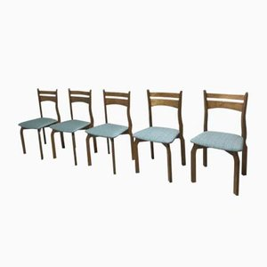 Chilenische Stühle aus Palisander, 1912, 5er Set