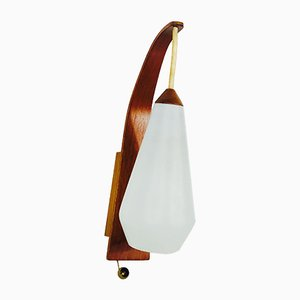 Mid-Century Teak & Opal Glass Fish Rod Hanging Lamp, 1960s