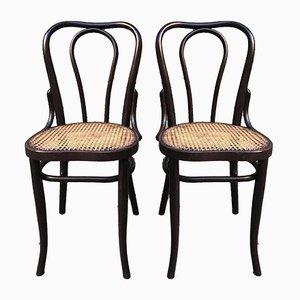 Österreichische Vintage Esszimmerstühle, 1920er, 2er Set