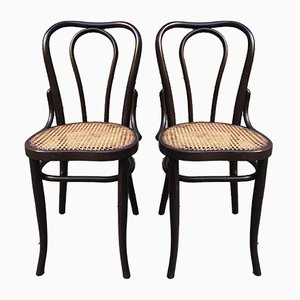 Vintage Austrian Dining Chairs, 1920s, Set of 2